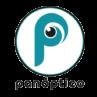 Panóptico | eCommerce & Marketing Digital para PyMEs